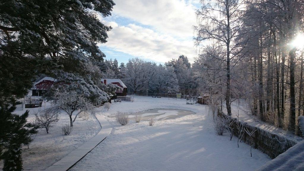 Ziema Vecmuižā